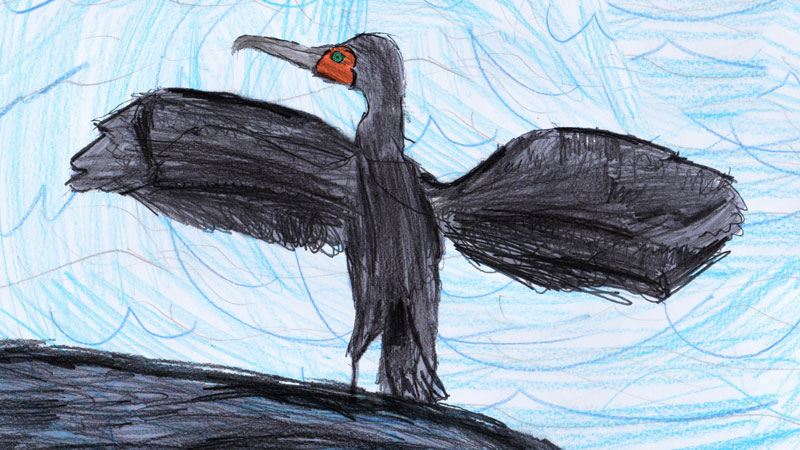 Cormorant-Harry-and-Anon-Lizards
